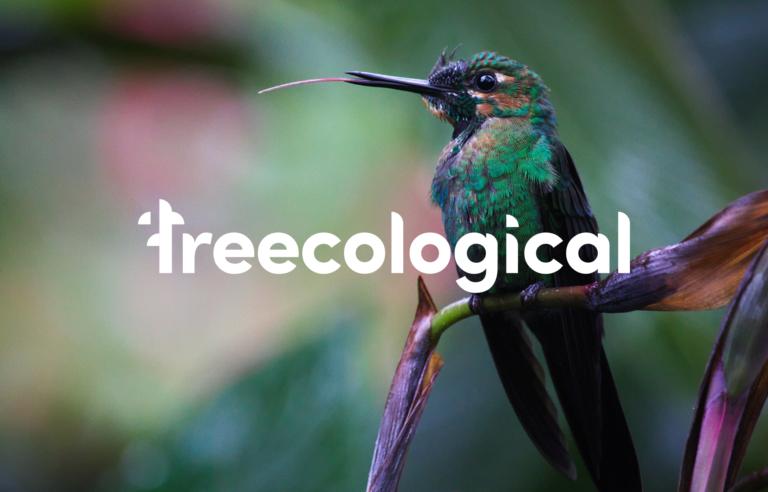 Treecological: Branding