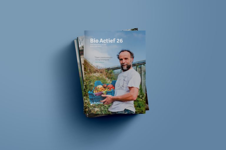 magazine design, magazine lay-out, typography, graphic design Antwerpen, logo design, visual identity, illustration.