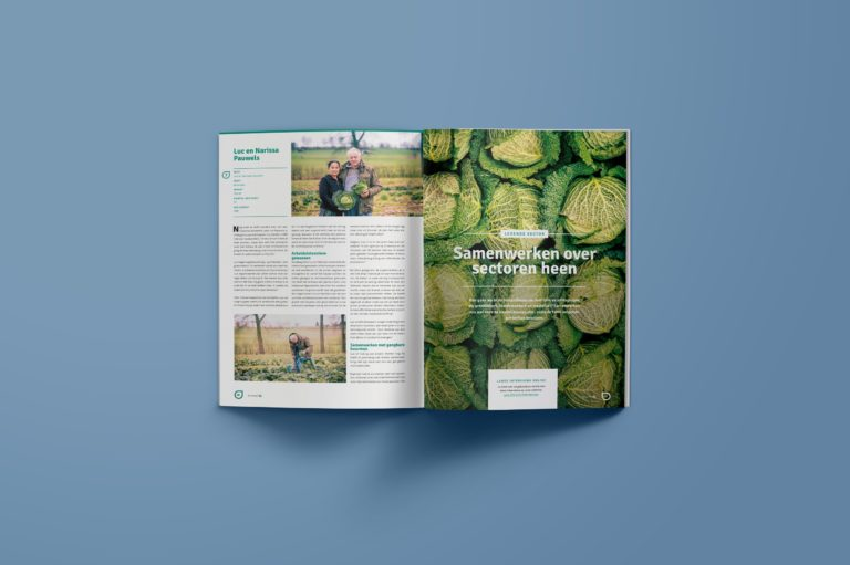 magazine design, magazine lay-out, typography, graphic design Antwerpen, visual identity.