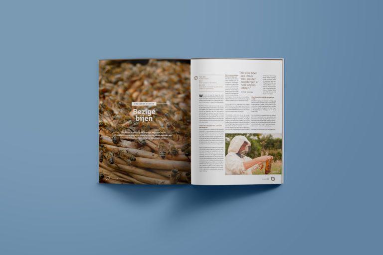 magazine design, magazine lay-out, typography, graphic design Antwerpen, visual identity, illustration.