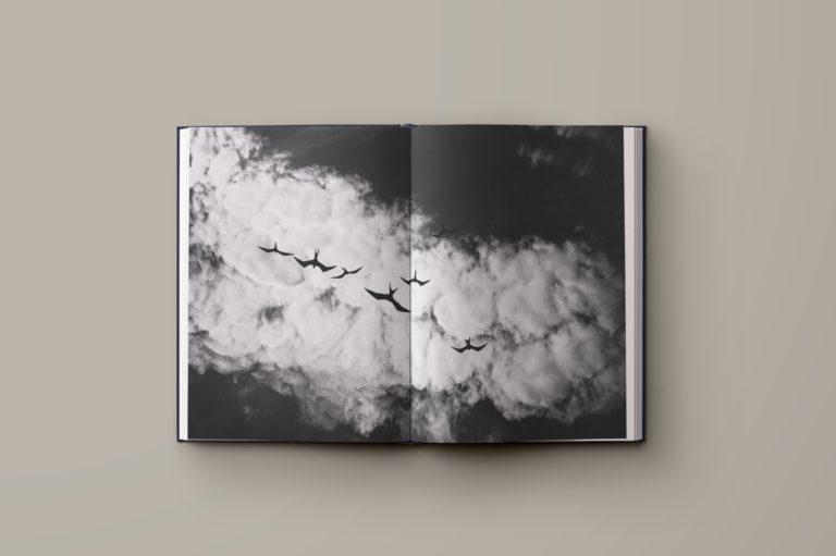 fotoboek cover ontwerp, fotoboek ontwerp, lay-out fotoboek, fotografieboek, ontwerp kunstboek Antwerpen, book design, photo book design.